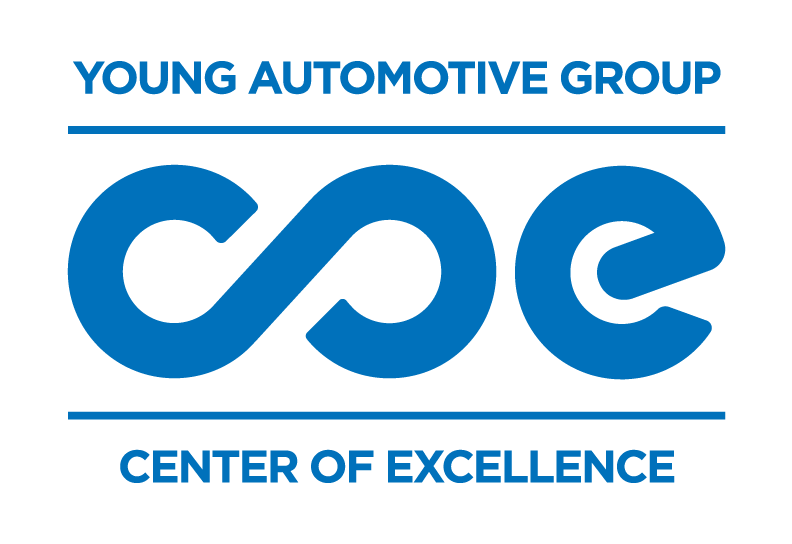 Young Center of Excellence